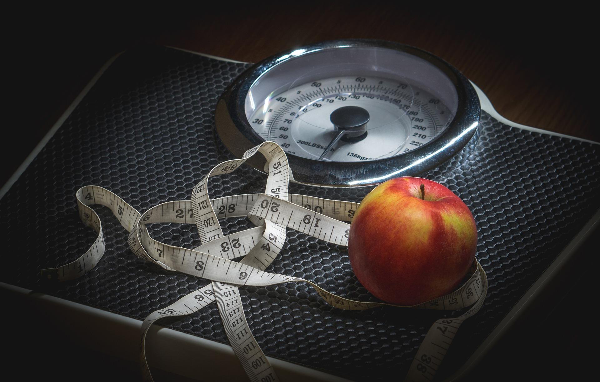משקל למדידת משקל הגוף
